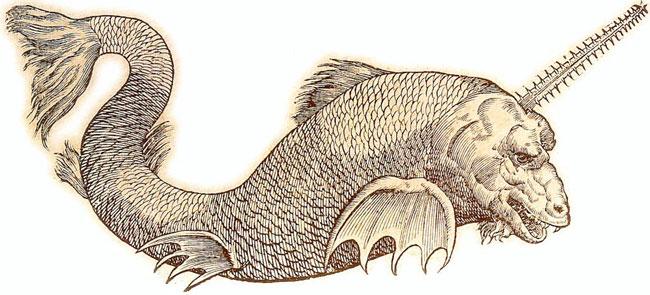 créature étang canada